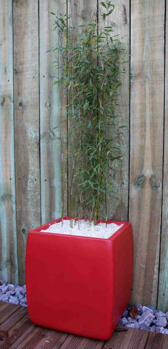 Design paysage maçonnerie minéral écologique terrasse bois ipé exotique bac pot jardinière fontaine acier rouillé inox caillebotis pergola bassin végétaux galet rocher déco clôture palissade éclairage